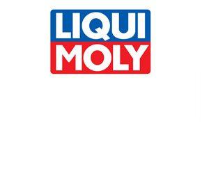Několikamilionové sponzorování zimních sportů firmou LIQUI MOLY