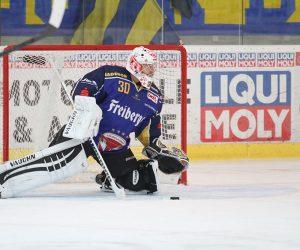 LIQUI MOLY sponzorom MS v hokeji