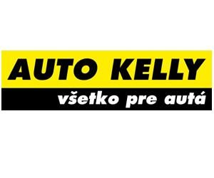 Auto Kelly: Elektronika podvozku 1